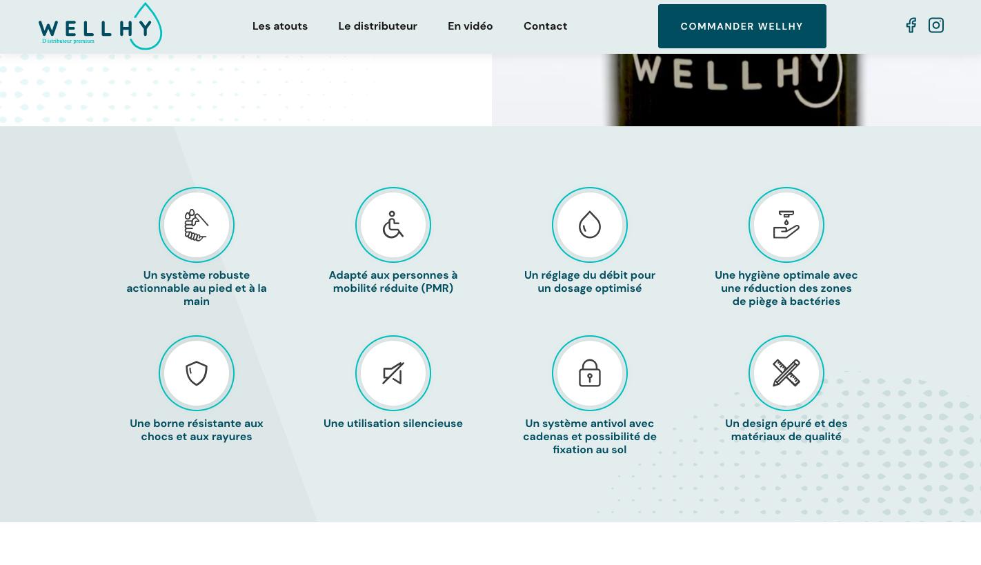 Les éléments graphiques du site Wellhy