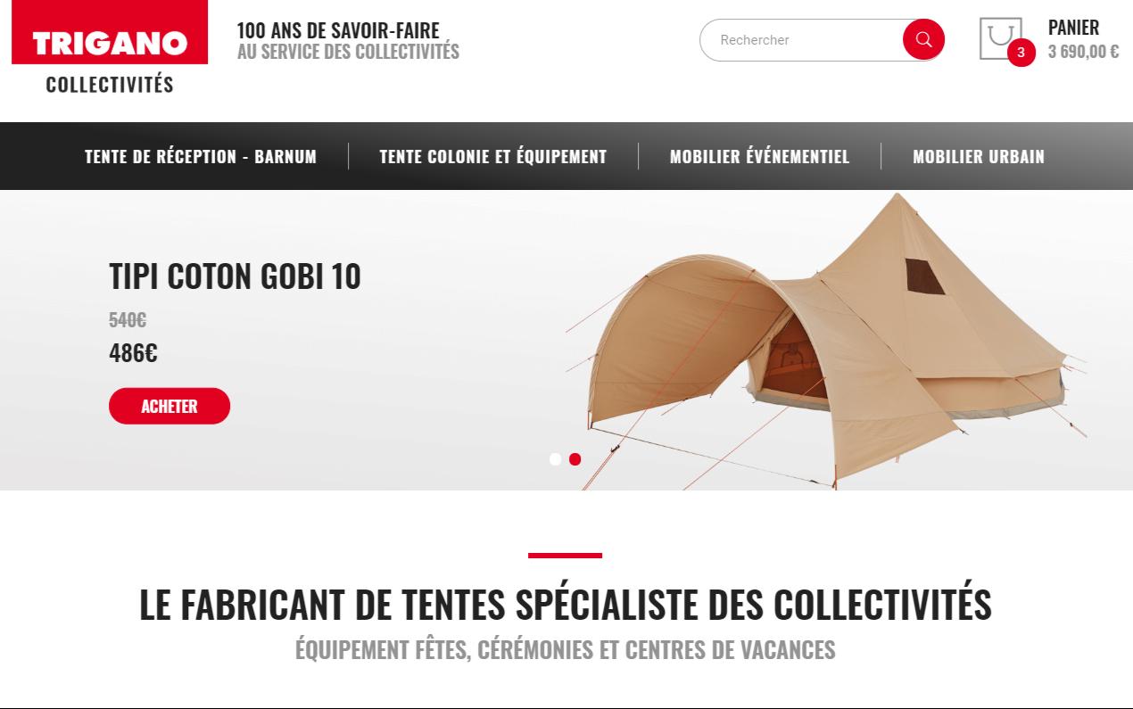 Page d'accueil du site ecommerce Trigano